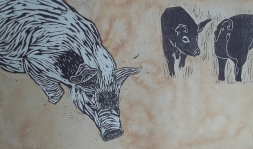 pig yard