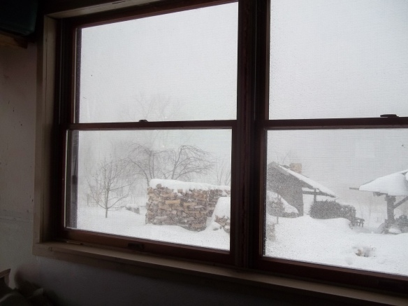 snowy studio
